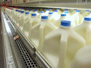 New Evidence in the Case Against Pasteurized Milk