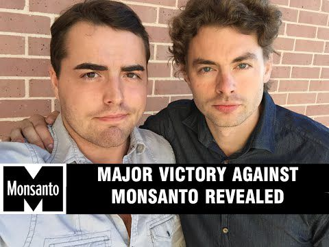 Monsanto Losing Hundreds of Millions, Investors Pulling Out: End of GMO Giant to Come