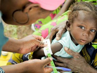 Five million people starving in Mali: UNICEF