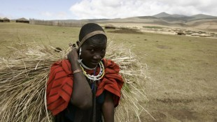 Tanzania's Masai face homeland eviction, so that Dubai royals can hunt