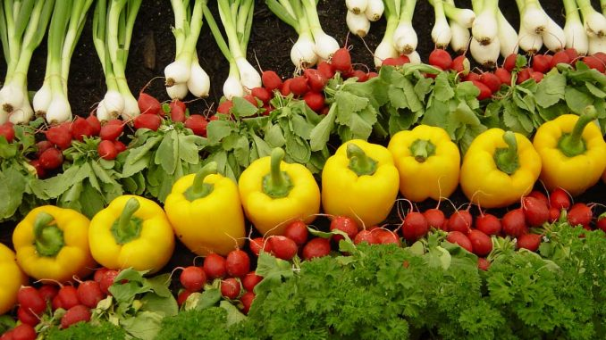 Scientists claim that Organic farming can feed the world if done right