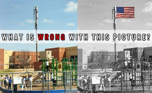 Why Is This Giant Cell Phone Tower in the Middle of an Elementary School Playground?