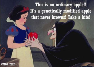 USDA approves Gene-Altered Apples