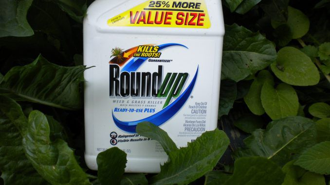 Monsanto Roundup is An Endocrine Disruptor at Levels allowed in Drinking Water.