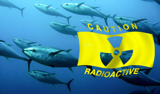 Media And Experts Tell Us That Fukushima Radiation Is Fine For Swimming In!