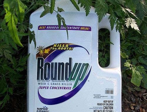 Retail Giant In Germany To Removes Glyphosate From 350 Stores