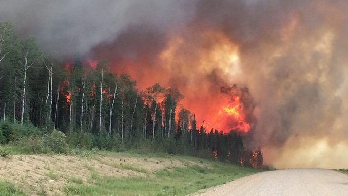 Canadian wildfires