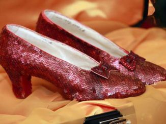 """""""The Wizard of Oz"""" Ruby Red Slippers"""