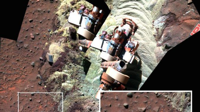When will NASA disclose that there is life on Mars?
