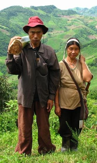 Homo sapiens From Wikimedia Commons: Akha couple in northern Thailand. The husband is carrying the stem of a banana-plant, which will be fed to their pigs.