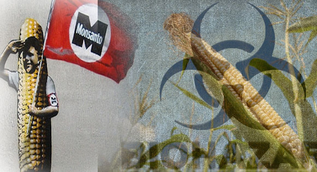 EU outlaws the banning of GMO foods across Europe