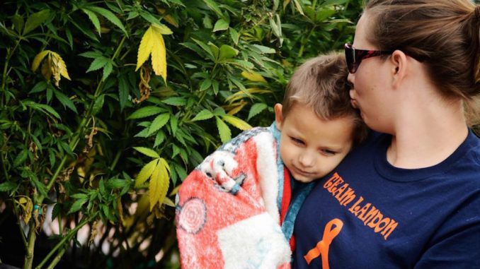 A 3-year-old cancer patient who was told he had just 48-hours to live was cured by taking Cannabis oil