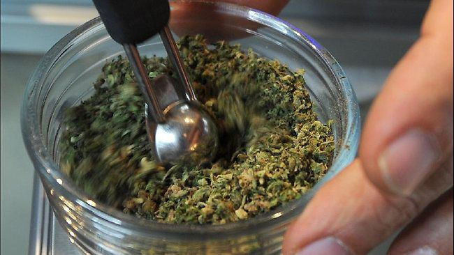 Queensland, Australia to trial prescribing cannabis to MS sufferers and epileptic patients