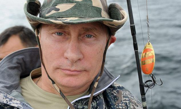 Putin declares that Russia will become the world's organic food superpower