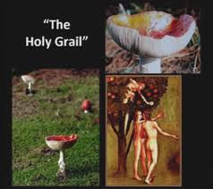 Is the Amanita magic mushroom the fabled Holy Grail?