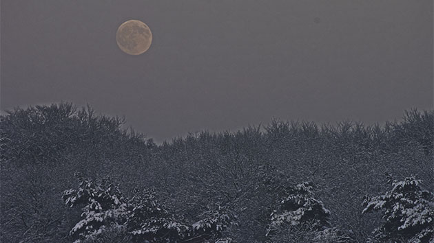 A rare full moon dubbed the 'cold moon' will be seen for the first time in decades this Christmas 2015