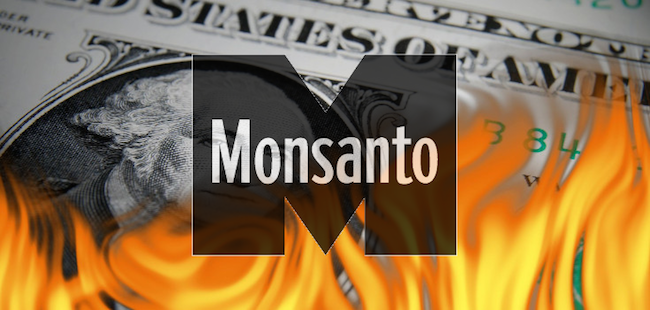Monsanto axe 3600 jobs