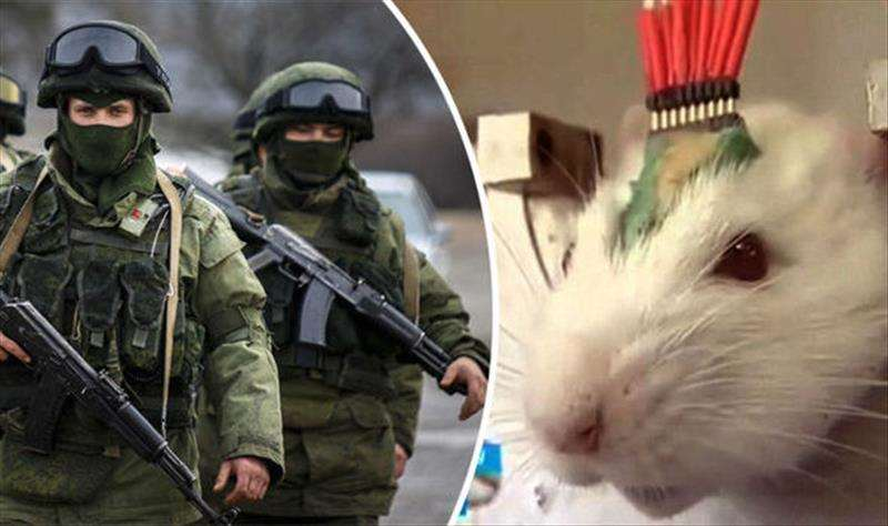 Brave Vladimir Putin has unleashed a new weapon in his valiant fight against ISIS and the threat of World War 3 - an army of super smelling cyborg RATS.