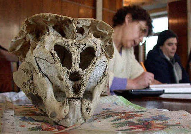 Bulgaria skull may be of alien origin say scientists