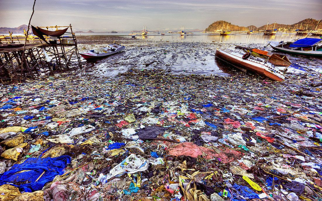 By 2050 there will be more plastic junk in the world's ocean than there are fish