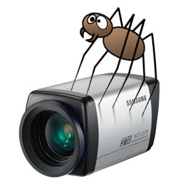 spider-on-security-camera