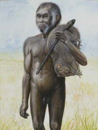 Depiction of a hobbit on Flores island