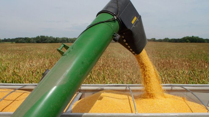 Russia bans American corn and soybeans, calling them 'unfit for human consumption'