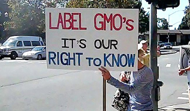 Corporate donors gave $11 million to stop the labelling of GMO food products