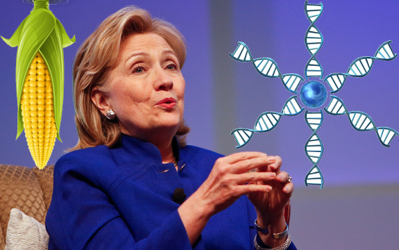 Gates Foundation Confirm Hillary Clinton's Support For GMOs