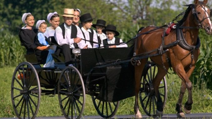 Why don't Amish people get cancer?