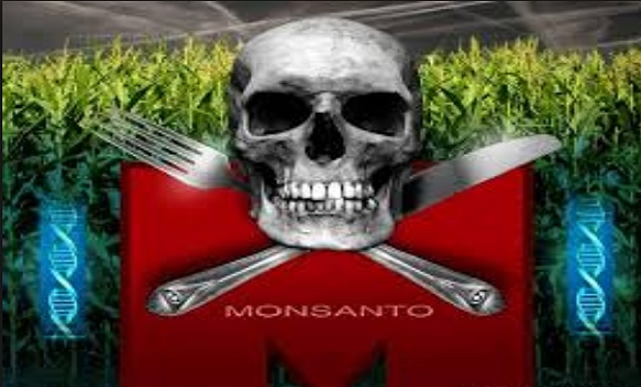 Monsanto-The-World's-Most-Evil-Corporation