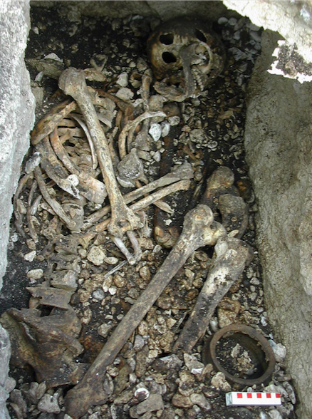 These bones were discovered behind McCuaig's Bar in County Antrim, Northern Ireland. A DNA analysis of them challenges conventional history. (Photo by Queen's University Belfast)