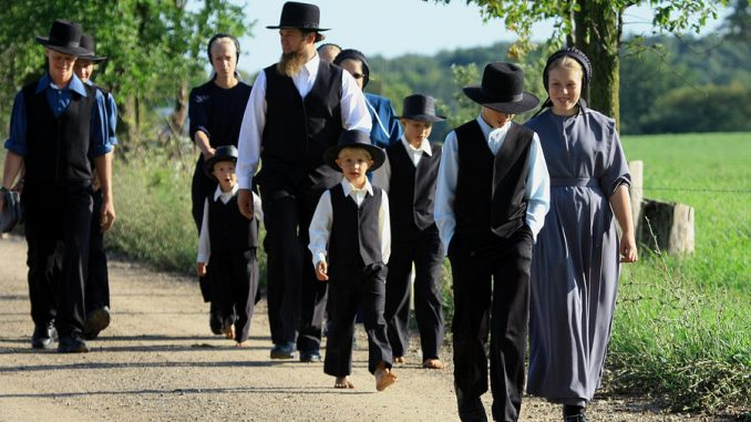 Why don't Amish children get autism like the rest of the population?
