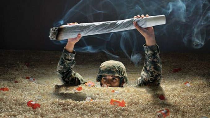 veterans using marijuana to combat PTSD
