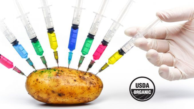 USDA announces that it will not regulate GMOs
