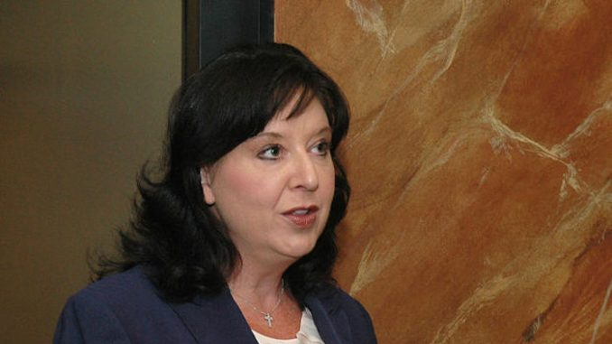 Arizona secretary of state Michele Reagan admits election fraud took place during primaries