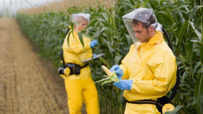 Cancer-causing Mosanto's Glyphosate Herbicide Found in Urine of 93% of Americans