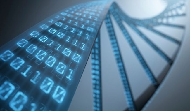 synthetic-human-genome