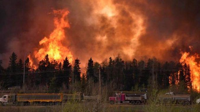 Canada Rejects International Assistance To Help Put Out Wildfires