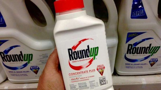 Monsanto sued over claims its popular weed killer Roundup caused cancer in 30 people