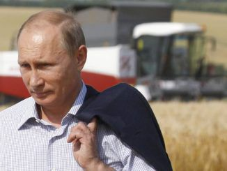 Russian President Vladimir Putin has outlawed GMO food in Russia, making it a criminal offence to import or produce it in the country.