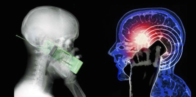 New study reveals that cell phones cause brain cancer