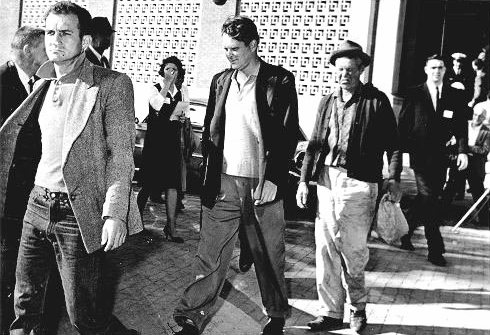 The three tramps arrested in the wake of the Kennedy assassination have long been suspected of being conspirators