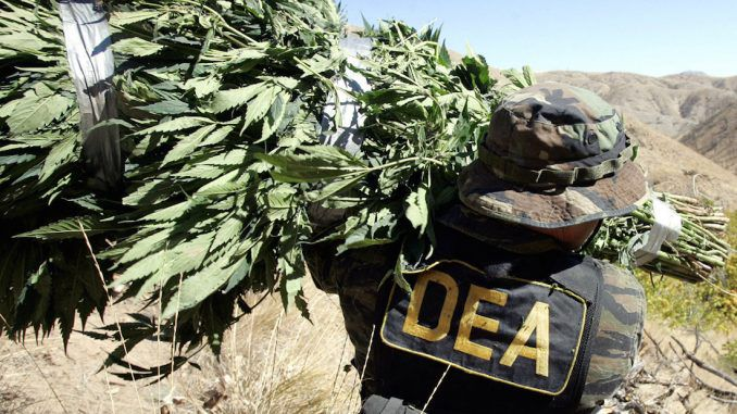The Drug Enforcement Agency refused to relax restrictions on cannabis last week, meaning marijuana will remain Schedule 1 — the strictest category of the Controlled Substances Act, designated for dangerous and addictive drugs with no medical value