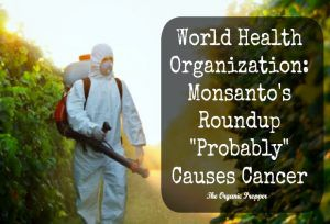 WHO-says-Round-up-probably-causes-cancer