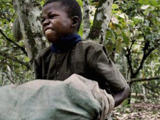 Nobody wants to support child slavery, but millions of Americans unwittingly fund the child slave labor trade in Africa every time they buy a chocolate bar.