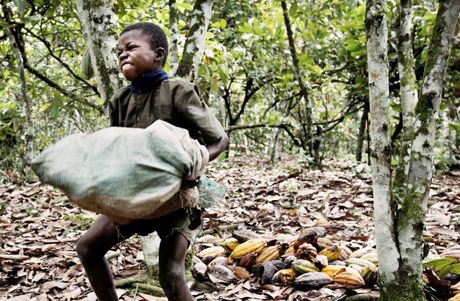 Child slavery cacao