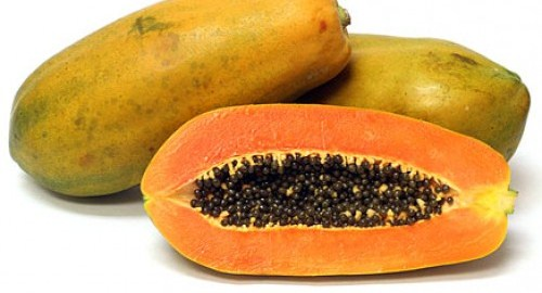 Papaya genetically engineered