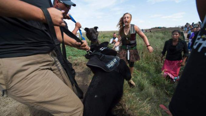 Peaceful Native American Protesters Pepper Sprayed & Attacked By Dogs