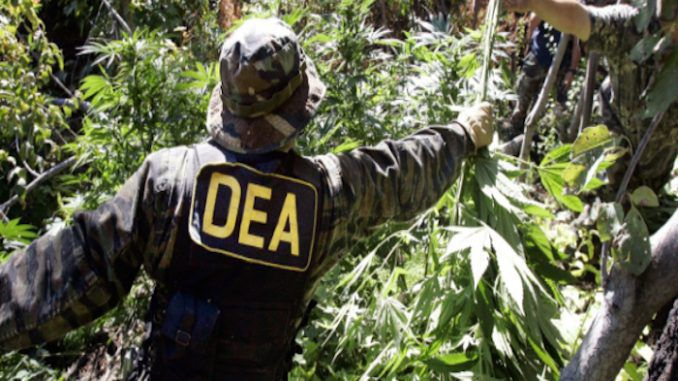 Bolivia successfully end 'war on drugs' in country by banning the DEA